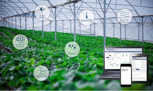 Aplicación en agricultura con sensores de monitoreo inalámbrico MONNIT